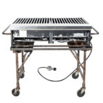 2' x 3' Propane Grill with Stand